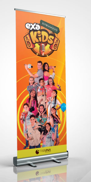 Agencia de Diseño en Puebla | Indetta | Publicidad | Roll Over Logística y Promoción